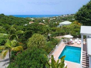 ALEXAMBRE... charming villa overlooking Orient Bay, sleeps 8, short drive to bea
