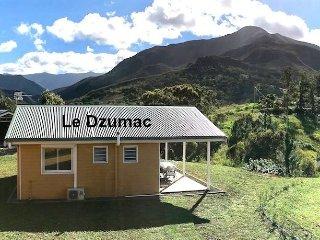 Gite Le Panoramique - Chalet 'Le Dzumac'