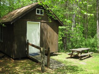 LOG CABIN 19/BOYERS POND CAMPGROUND