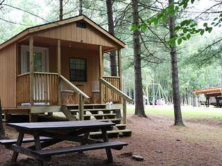 LOG CABIN 18/ BOYERS POND CAMPGROUND