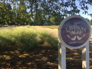 Little Lavender Acre - Historic Farmhouse on Lavender Farm in Willamette Valley