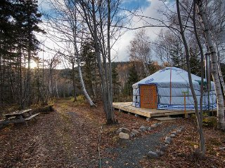 The Forest Yurt