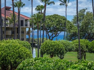 Kamaole Sands, Gorgeous Ocean Views, Large Lanai, AC, Well Equipped