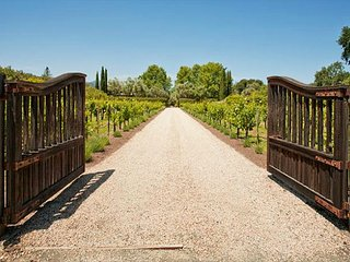 Beautifully Renovated 4BR Mediterranean Vineyard Retreat w/ Private Pool