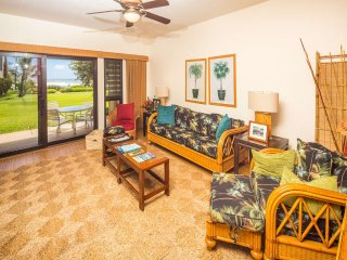 Stylish Tropical Suite w/Bath+Kitchen Upgrades, WiFi, DVD, Lanai–Kaha Lani 113
