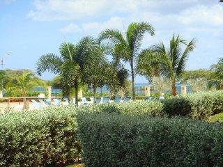 Delightful garden and ocean view!