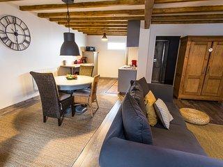 Grand et moderne appartement 3 pieces sur la route des vins - Le Pignon