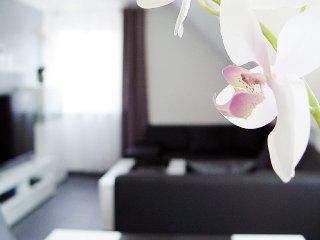 Appartement / Ferienwohnung La Domus Premium Lotte / Osnabrück 4*