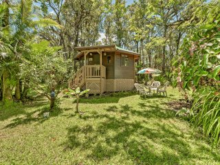Clean & Secluded Mountain View Studio in Jungle!
