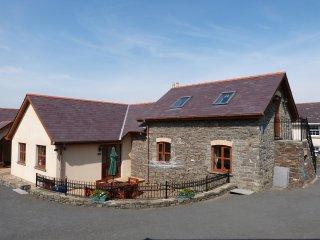 Self accommodation Cottage near Aberystwyth Blaenilar - 73032