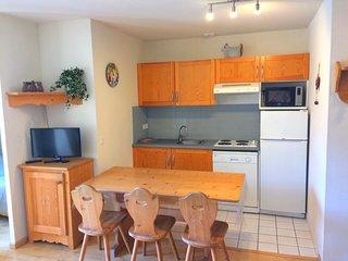 Ravissant appartement T2 – vue montagne  - Piscine– linge et ménage fourni