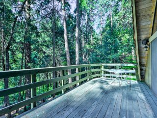 NEW! 1BR+Loft Pollock Pines Cabin w/ Large Deck!