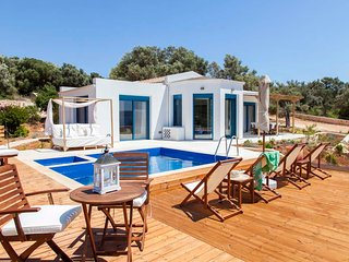 Villa with private pool and sea access