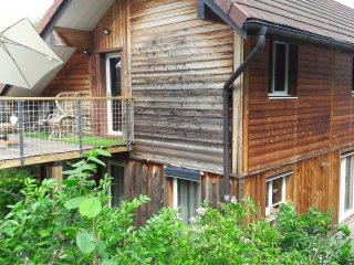 ARBOIS - Gite au figuier - Studio duplex terrasse plein sud