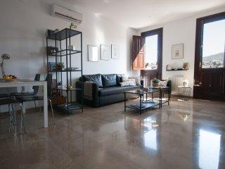 Apartamento Exclusivo frente Ayuntamiento Granada