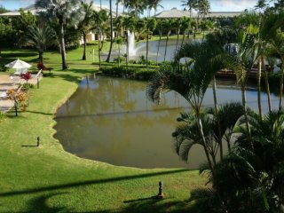 Kauai Beach Villas: An Unforgettable Vacation!