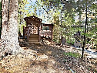 2BR Vintage Sprucewold Cabin w/ Forest Views - Walk to Barrett Park