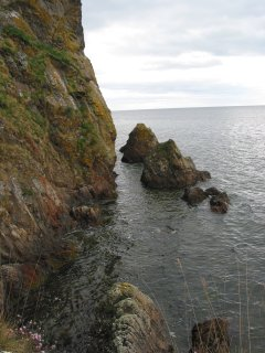 Coast Nr Rosemarkie Caves