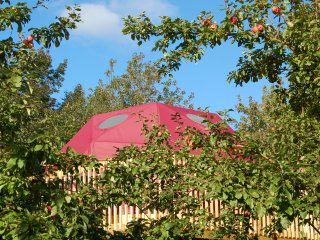 Apple Dome