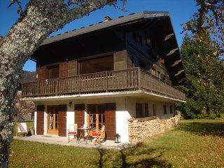Location appartement neuf dans chalet suisse - rez de jardin et terrasse
