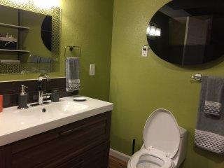 High end modern  bathroom
