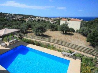 Olive Plant Villa - Olive