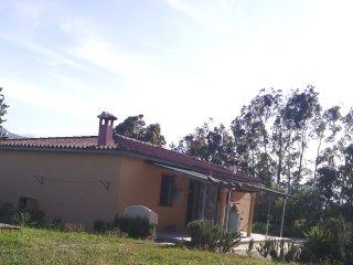 Nice apt with garden & terrace