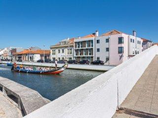 Sunny flat 100m from Aveiro Lagoon