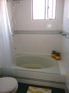 En-suite bath tub and shower.