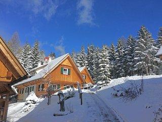 Dorner Hütten in Klippitztörl
