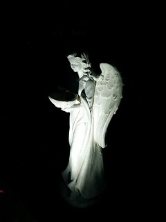 Backyard angel