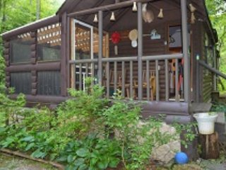 Spivey Falls Creekside Cabin