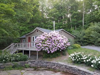 Charming Star Sapphire Cabin with Luxury Hot Tub near Windham & Hunter Mtn.