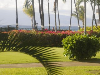 From the Moment You Enter You Experience Aloha!