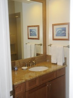 Second bathroom off entry way adjacent to 2nd bedroom. Granite & natural stone