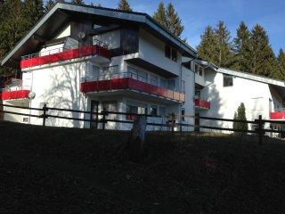 Apartamento en Schonwald (Schwarzwald), Alemania, cerca a Triberg (4 Km).