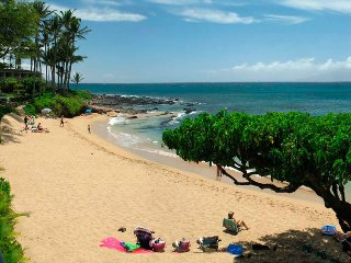 Napili Gardens unit 4: AC, Beach is across the street!