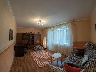 Spacious apartment in a city center