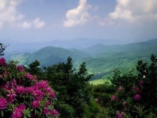CHARMING & SECLUDED SMOKY MOUNTAIN CHALET NEAR DOWNTOWN GATLINBURG SLEEPS 10!!*