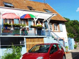 Pfalzhaus im Trifelsland mit Sonne im Wein