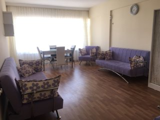 3+1 furnished flat in city centre