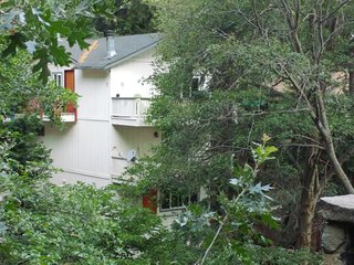 Deep Forest Escape: Casa de Monteverde