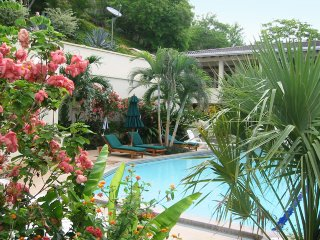 View of our large tropical swimming pool and terraces from kitchen of Suite 102