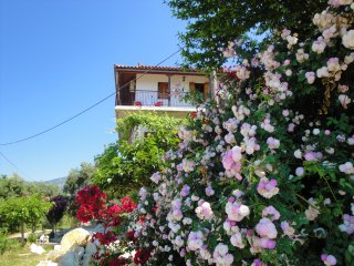 Crysanthi's - Studio 3 for rent, Syvota