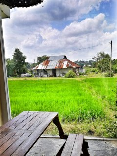 Paddy field view from the outdoor seating area