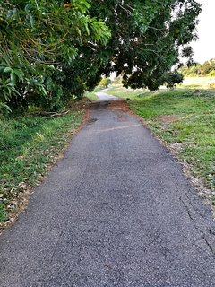 Jogging track along riverbank which is 200M from the holiday home