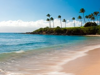 KAPALUA RESORT OCEAN & SUNSET VIEWS, AIR CONDITIONING, FREE PARKING, NO FEES!