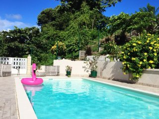 Nord de la Martinique, jardin calme, vert, piscine!