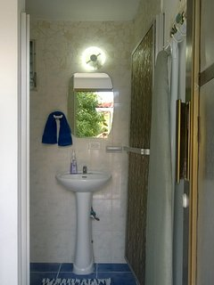 Downstairs bathroom & shower