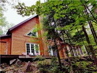 Chalet l'espace des bois situé en pleine nature, un vrai paradis!
